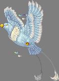 Constella Kaiser
