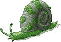 unnamed Mosh Snail